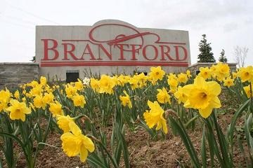 Brantford Criminal Lawyer